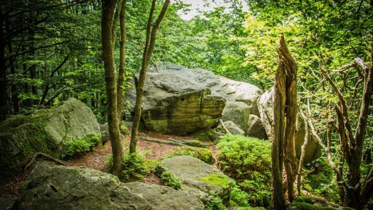 rezerwat-kornuty-skały